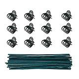 50 soportes de bambú + 100 clips de sujeción