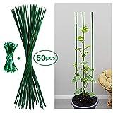 50 varillas de bambú ø5mm 60 cm