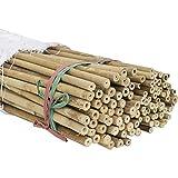 100 tutores de bambú ø10/12mm 120cm