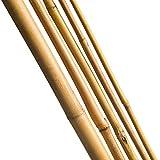10 tutores de bambú ø6/8mm 60mm